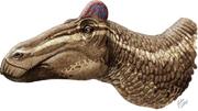 軟組織のとさかが付いたEdmontosaurus regalis 復元画。©J. Csotonyi