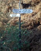 Typhoo crossroads