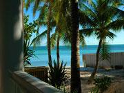 Blauer Palmenstrand