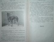 """""""Справочная книга по собаководству"""" 1961г. издания. И книге есть немного и о той-терьере. И фото той-терьера. Прошло 46 лет (так как книга сдана в набор 28.12.1959 года). Авторы книги Заводчиков П.А.,  Курбатов В.В., Мазовер А.П., Назаров В.П."""
