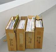 30x40, 2012, bemalte Leinwand, Kartons, Installation