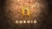 "Логотип игры ""Cuboid"", 2008"