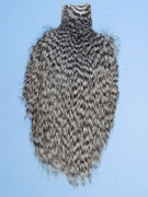 Whiting Spey Hencape Grizzly