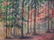 Forêt d'automne, aquarelle sur papier