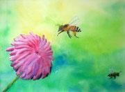 """""""Sauvons les abeilles"""", aquarelle sur papier"""
