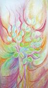 Heilpflanze Brennessel