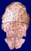 giáp cốt văn , khắc trên mai rùa và xương thú