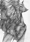 """""""D'apparence""""/crayon sur papier/42x29,7cm/2013 (collection particulière)"""