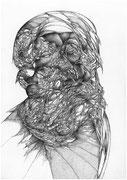 """""""Le piège""""/pierre noire, mine de plomb et crayon sur papier/42x29,7cm/2013 (collection particulière)"""