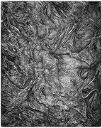 """""""L'extinction""""/eau forte sur zinc/25x20cm/2013."""