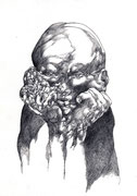 """""""Sans titre""""/crayon sur papier/29,7x21cm/2011 (collection particulière)"""
