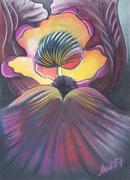 """IRIS #9"", Pastellmalerei auf Papier,"