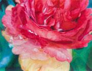 Red Rose 318×410mm パネルに綿布 水可溶性油絵具