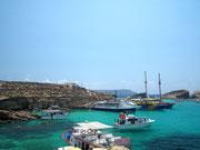 Genauso, ein Touristen-Highlight auf der kleinen Insel Comino . . .