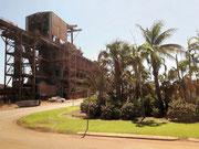Trotz rostbrauner Erde wachsen Palmen in dieser Zufahrt