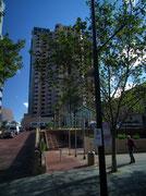 Wie überall in Australien: Plätze und Strassen sind auch in Adelaide stets sehr sauber