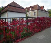 Sogar die Brückengeländer leuchten in Herbstfarben