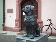 Der berühmte Rottweiler-Hund «bewacht» den Eingang zum Stadthaus