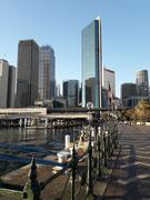 Blick vom Schiffsanlege-Terminal auf einen Teil der Downtown von Sydney