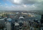 Das erlaubt herrliche Blicke auf Sydney und in die Ferne
