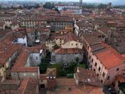 Blick vom Torre di Guinigi in Lucca