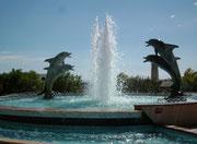 Der hübsche Delphin-Springbrunnen inmitten des neu erstellten Bootshafens