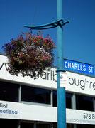 An den originellen Straßenlaternen bunte Blumenampeln