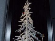 Der mehrere Meter hohe Tannenbaum im Winterkleid...
