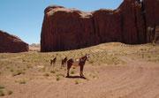 Auch vereinzelte Wild Horses haben wir gesehen...