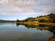 Schönes Licht auf der morgendlichen Fahrt nach Dunedin