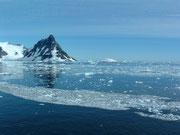 kleines Treib-Eis - Natur pur !