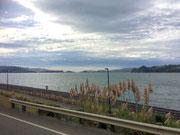 Fahrt zurück nach Port Chalmers, bzw. zum Schiff