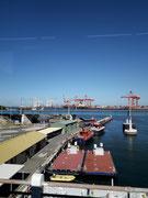 Die vielen Ladekräne im Hafengebiet zeigen die enorme Wichtigkeit . . .