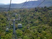 Wir nähern uns der Endstation Kurunda, die auf 335 Meter Höhe liegt
