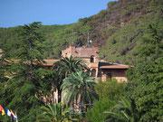 Gut «versteckt» hinter schönem Palmengarten liegt der Prunkbau