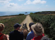 Diese schmale Strasse auf der Hauptinsel führt zur sog. Little Sark