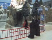 Auch orthodoxe Moslems müssen nicht auf das Wintervergnügen verzichten. Vermietet werden auch schwarze Stepmäntel und Skianzüge