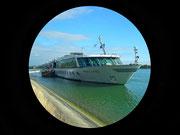 Die MS Amadeus Classic erwartet uns zurück an Bord