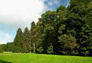 . . . die Grünflächen sehr schön gepflegt wird