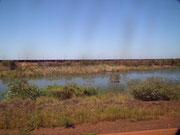 Leider weit weg: Kilometerlange Züge mit Hunderten von Waggons