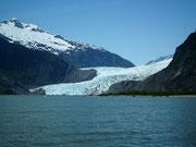 Die Gletscherzunge ist am See noch gegen 30 m hoch