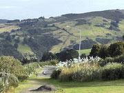 Neuseeland ist sehr hügelig und grün
