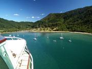 Letzter Blick von Bord ans Ende des «Queen Charlotte Sound» . . .