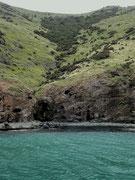 Hier nochmals: Die Berghänge sind vom Meer bis zur Spitze grün
