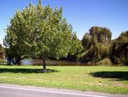 Kleine Seen säumen immer wieder die Straße
