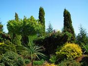 Der wunderschön angelegte Botanische Garten überrascht . . .