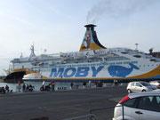 Eines der zahlreichen Fährschiffe der Moby Lines