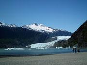 Ein letzter Blick zum Gletscher der jährlich nur etwa 10 m an Länge verliert