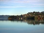 Hübsche Wohnlage am Hang mit Blick auf den Otago Harbour