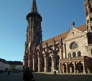 Blick vom Münsterplatz auf das «Freiburger Münster» . . .